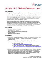 1.2.2.a_skeletonhunt-3.docx