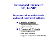 ENVE331-SP10 - Wetlands Lecture