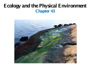 Slideshow_ Chapter 43, The Physical Environment