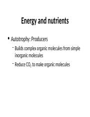 9 Energy and nutrition.ppt