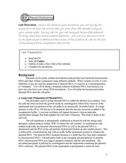 2010 Bio 311 Lab C Manual (part 3)