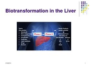 Week 10_Removal of Moleucles from the Body_Kidney function_March 19_2014