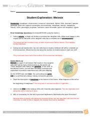 Gizmo.docx - Name Date Student Exploration Meiosis 1 What ...