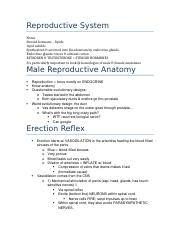 -Reproductive.docx