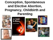 Outline Conceiving Children and More(3)