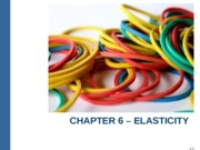 Ch 6 - Elasticity for moodle