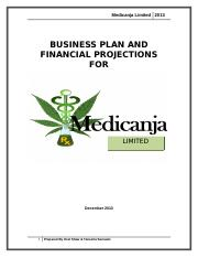 Business Plan for Medicanja Limited(2)