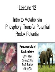 Lecture-12 - Intro to Metabolism (2)
