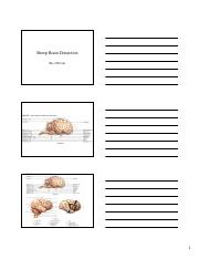 Sheep Brain Dissection Powerpoint.pdf