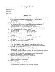 Microbiology Study Guide 3.docx