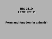 Lecture 11 posted