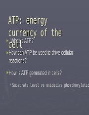 BIOC 2600 ATP synthesis (1).ppt