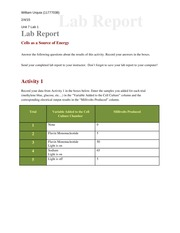 lab_report_cell_energy