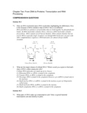 ch10_Transcription_solutions
