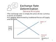 determinants of exchange rate essay