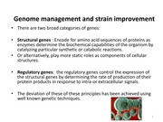 Lecture - Genome Management and Strain Improvement