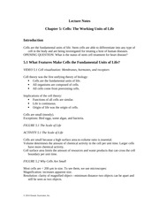 Ch05 Lecture Notes-Cells The Working Units of Life