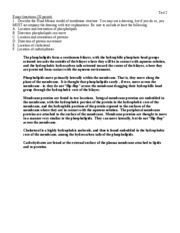 discri tive essay Narrative essay soccer injury essay in english on diwali 2017 kerala state youth festival oppana essay essay on protection of girl child naturalists essay on.
