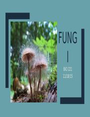 Fungi and Bacteriophages