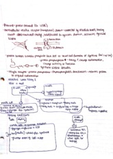 IntrodIntro to Physiology Class Notes
