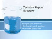 Technical Report Structure 2
