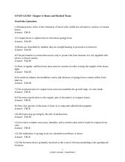 Study Guide Chapter 4 Study Guide Chapter 4 Tissue The Living