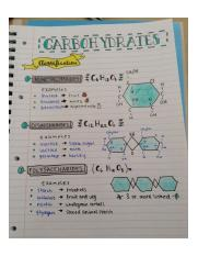 98172744bc15f3255f1027a674995f4e--study-notes-chemistry-biology-notes-studying.jpg