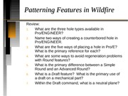 Patterning Features - Wildfire - 04