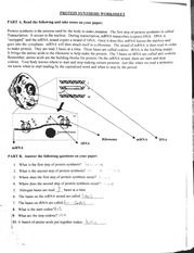 Protein synthesis worksheet