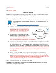 Carbon Cycle WS.docx