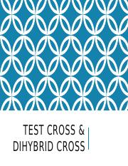 Test and Dihybrid Cross.pptx