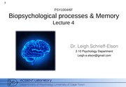 Biopsychology_2015_Lecture_4 2