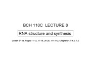 110C LEC 8 RNA structure and synthesis