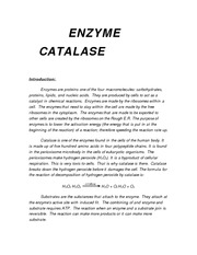 ENZYME CATALASESample Lab