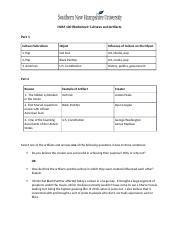HUM 100 Worksheet Cultures and Artifacts.docx