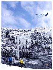 Icelandair.Group.A.R.2011