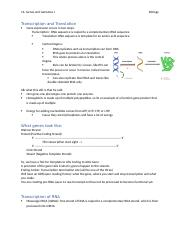 14- Genes and Genomes I.docx