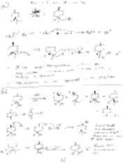 Radical Reactions Answer Key.pdf.png