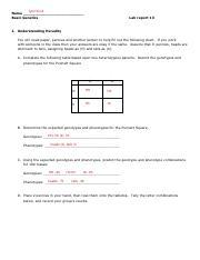 Genetics Lab 13 pdf - Tyler Scott Name Basic Genetics Lab