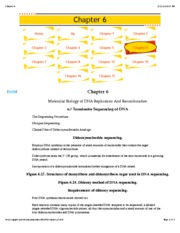 Chapter 6 DNA Replication and Recombination