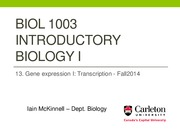 BIOL1003 -13_Gene expression I - Transcription - Fall2014