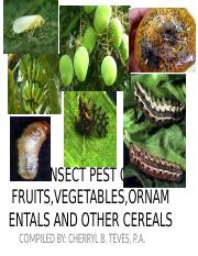 INSECT PESTevis of different crops.ppt