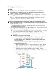 Ch.18 Regulation of Gene Expression Notes.docx
