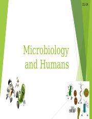 Microbiology  and humans.ppt