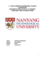 Lab_Report_Magnetic_Induction