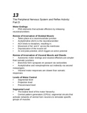 Chapter 13 outline Peripheral Nervous System and Reflex Activity PART D
