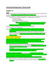 Molecular Biology Exam 5 Study Guide