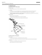 notes--dna structure thorough.pdf