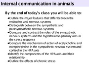 Intro to coordination of function in animals