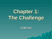 Chapter 1 - The Challenge